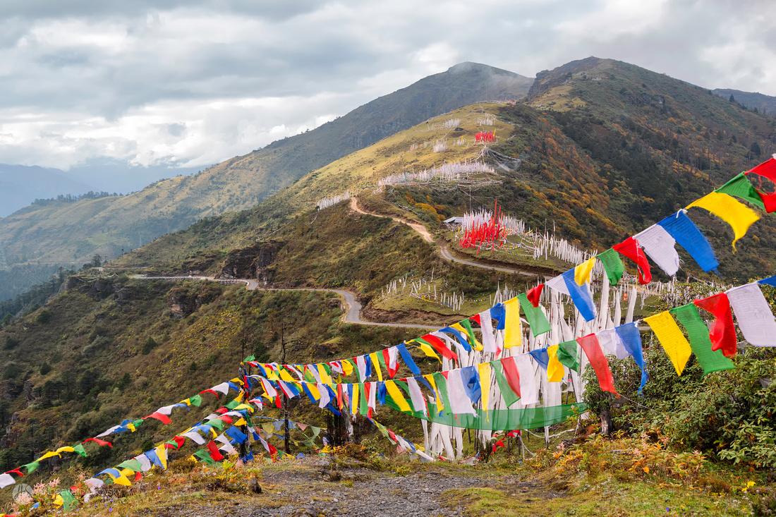 Prayer Flags at Chele La Pass
